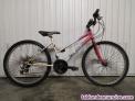 Bici aluminio y amortiguador
