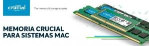 Fotos del anuncio: 2 módulos de memoria RAM Crucial CT8G3S1339M