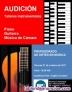 Clases de piano, guitarra, violín, saxofón, canto, etc.