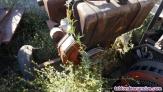 Fotos del anuncio: Motor lombardini 3ld 1 cilindro