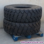 Neumáticos maxam 17.5 r25 tubeless