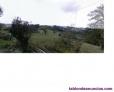 Fotos del anuncio: Se venden 7 fincas en Muñó, a 8 Km. De Pola de Siero, a 18 Km. De Gijón