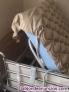 Fotos del anuncio: Cama articulada eléctrica, geriátrica y completa, prácticamente nueva