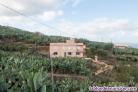 Fotos del anuncio: ID-303    Vivienda situada en un enclave privilegiado para el cultivo de platane