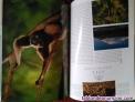 Fotos del anuncio: Parques nacionales del mundo