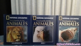 Fotos del anuncio: Enciclopedia de los animales National Geographic