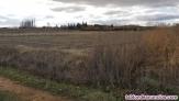 Fotos del anuncio: Venta parcela 8.000 m2 Ctra Puente Villarente-Boñar, km 7 Santa Olaja de Porma