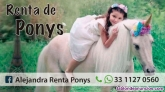 Fotos del anuncio: Renta de ponys