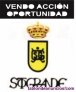 Vendo acción RC de Golf Sotogrande.