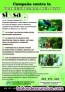 Fotos del anuncio: Sixsa - control de plagas. PROCESIONARIA