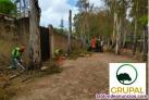 Fotos del anuncio: Servicios jardinería