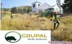 Fotos del anuncio: Jardinería, trabajos forestales y limpieza