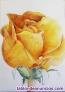 Fotos del anuncio: Aprende a pintar y dibujar sin dificultad y en poco tiempo