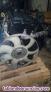 Fotos del anuncio: Motor aligerado tipo h9fb de ford transit 2.4 tdci