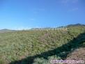 Fotos del anuncio: ID-424  Gran terreno en la zona noroeste de la isla de la Palma, en Lomada Grand