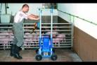 Fotos del anuncio: Batidores para slats reck porco-torro