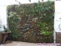 Fotos del anuncio: ### instalación de jardines verticales ###