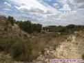 Fotos del anuncio: Ref: 1767. Parcela rústica en venta en Crevillente (Alicante)