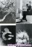 Fotos del anuncio: Colección postales metrònom