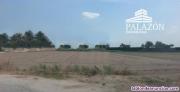Fotos del anuncio: Ref: 0011. Parcela rústica en venta en Catral (Alicante)