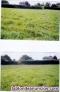 Fotos del anuncio: Terreno rustico de labradío