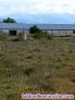 Fotos del anuncio: Venta de parcela en Talamanca de Jarama