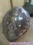 Fotos del anuncio: Caparazón de tortuga decorado
